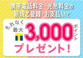 携帯電話料金・光熱料金の新規ご登録&お支払いで最大3,000ポイントプレゼント!