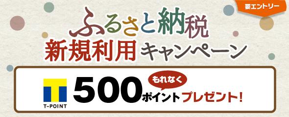 【インターネット限定!ふるさと納税新規利用キャンペーン】